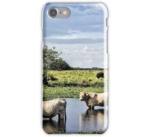 Aint that some bull iPhone Case/Skin