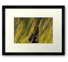 Wind In The Willows Framed Print