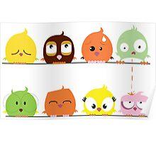 Funny cute cartoon birds Poster