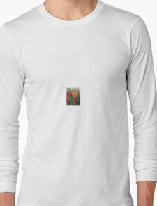 hummingbirds and dragonflies Long Sleeve T-Shirt