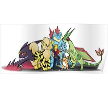 My Pokemon Team Poster