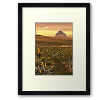 Black Eyed Susans Pawnee Buttes Framed Print