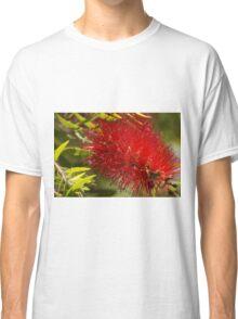 Bottle brush flower Classic T-Shirt