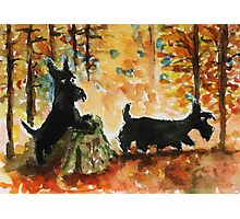 Scottie Dogs 'Autumn Fun' Photographic Print