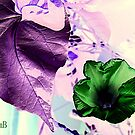 Inverted Garden Colors by Susan Bergstrom