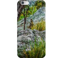 Bush Baby iPhone Case/Skin