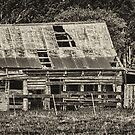 1125 Old Barn by DavidsArt