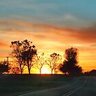 Country Sunset by Nadya Johnson