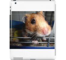 Blu Fondue's First Photo Op iPad Case/Skin