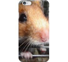Blu Fondue's First Photo Op iPhone Case/Skin