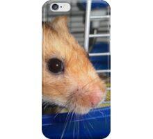 Blu Fondue, the beatnik hamster iPhone Case/Skin