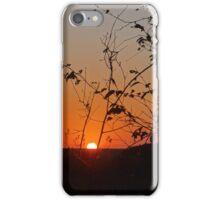 Sunset in the Kruger National Park iPhone Case/Skin