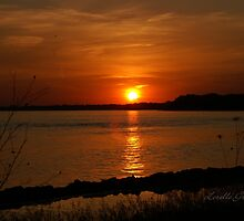 Sunset by Lorelle Gromus