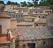 Spanish Roofs by Sue Martin