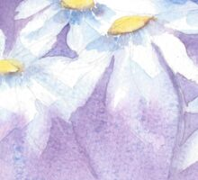Daisies and sunbeams Sticker