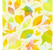 Falling leaves pattern Photographic Print