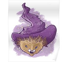 A little Hedgehog magic Poster