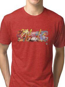 Pokemon Alola Birds Tri-blend T-Shirt