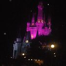 Night in Walt Disney World by Margybear