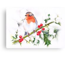 Winter Robin and Holy  Canvas Print