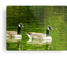two quackers! Metal Print