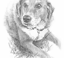 family dog drawing by Mike Theuer