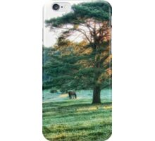 Morning dreams... iPhone Case/Skin