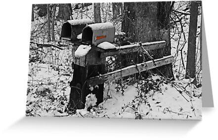 Snowy Mailbox SC by Mary Carol Story