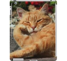 Bored cat iPad Case/Skin