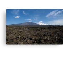 Etna Did This - the Lava Fields and the Volcano  Canvas Print
