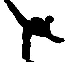 Karate Kick Silhouette by kwg2200