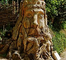Dead Tree Carving of Neptune Sea God by Rod Johnson
