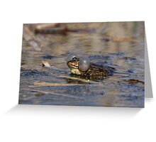 Marsh Frog croaking Greeting Card