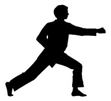 Karate Punch Silhouette by kwg2200