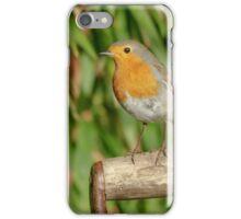 European Robin (Erithacus rubecula) on garden spade iPhone Case/Skin