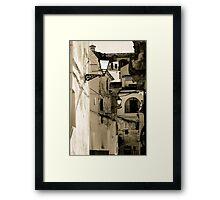 Gallivanting Framed Print