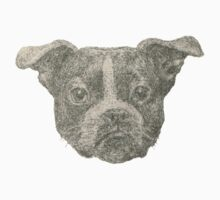 Henry the Boston terrier  Kids Clothes
