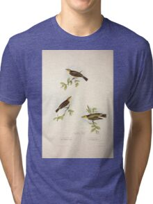 John Gould The Birds of Europe 1837 V1 V5 131 Willow Wren Tri-blend T-Shirt