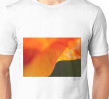 Waving Stripes Unisex T-Shirt