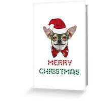 MERRY CHRISTMAS CHIHUAHUA Greeting Card