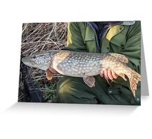 Northern Pike (Esox lucius) Greeting Card