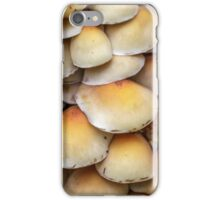 Sulphur Tuft mushrooms (Hypholoma fasciculare) iPhone Case/Skin