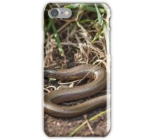 Adult Slowworm (Anguis fragilis) with young babies among dirt and scrub iPhone Case/Skin