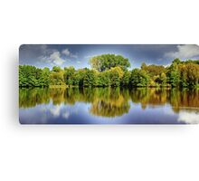 forest mirroring Canvas Print