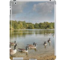 Geese on the Lake HDR iPad Case/Skin