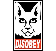 obey not obey disobey Photographic Print