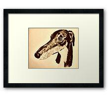 Quirky saluki/ lurcher/ greyhound Framed Print