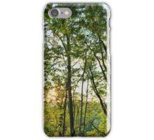 Pennsylvania Landscape #2 iPhone Case/Skin