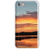 Pennsylvania Landscape #5 iPhone Case/Skin