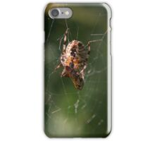 Successful Spider iPhone Case/Skin